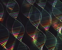 Discover dna is a