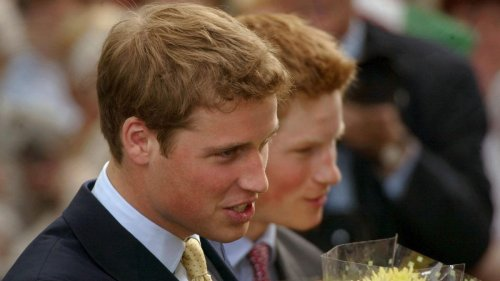 The Undying Fantasy of a Dreamy Prince William