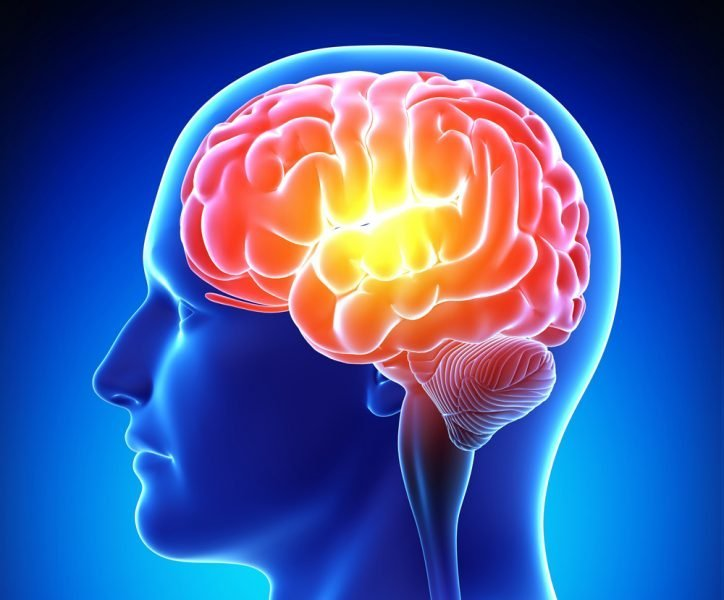 HERBS TO BOOST BRAIN FUNCTION