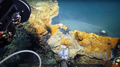 Probing the Undersea Dead Zone Known as the Hot Tub of Despair