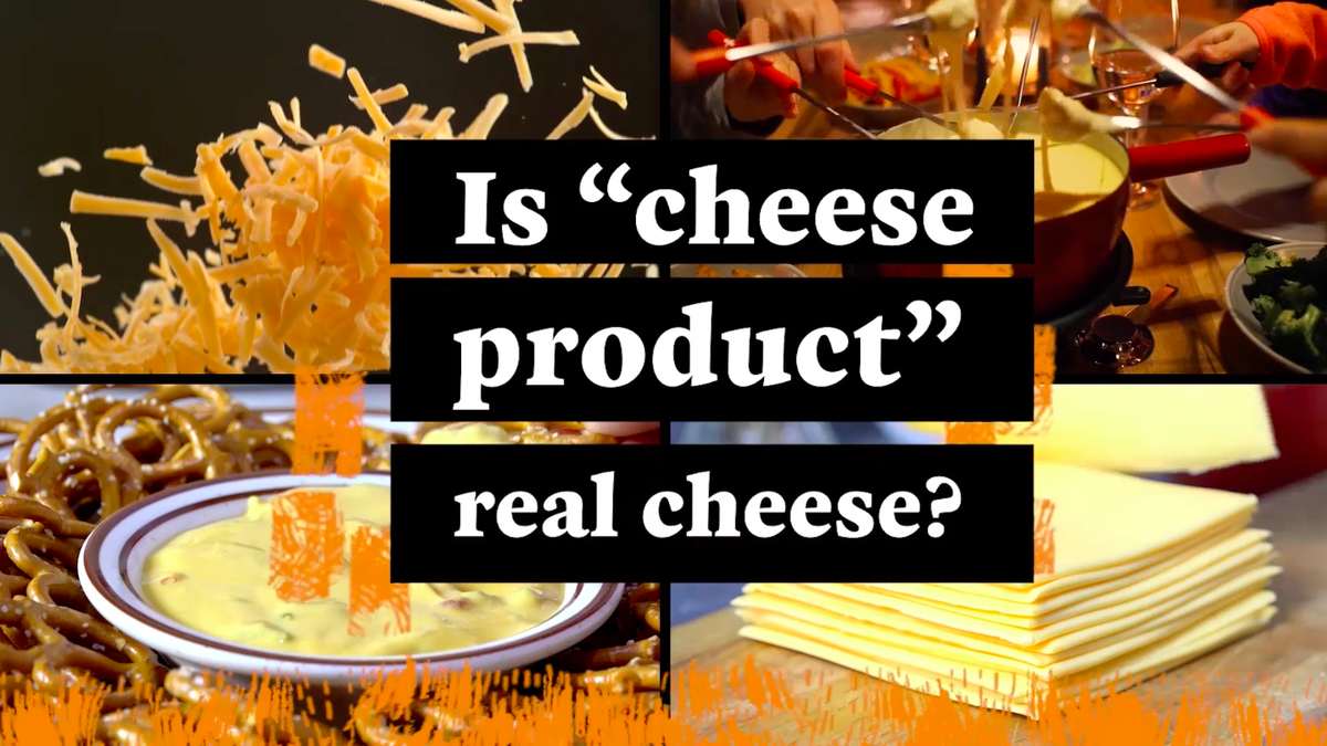 Everything You Ever Wanted To Know About Food