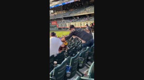 Padres Fan Punches Man at Baseball Game