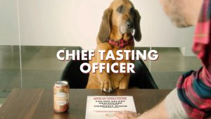 Dog Owners! This Company if Offering $20K Salary to One Lucky 'Chief Tasting Officer'