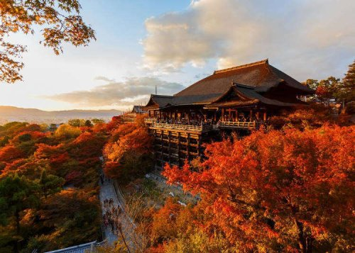 Start Your Dreams With Kyoto's Colorful Leaves