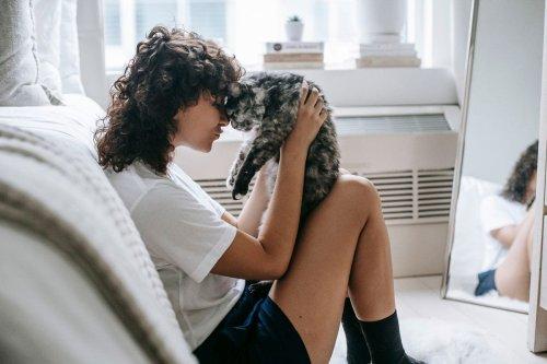 10 Secrets to a Happy Cat
