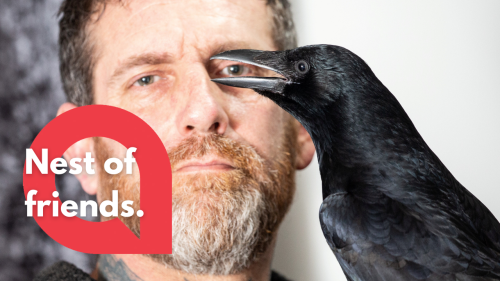 A man nursed a baby crow back to health who now rules the roost - stealing food and BARKING at his dogs