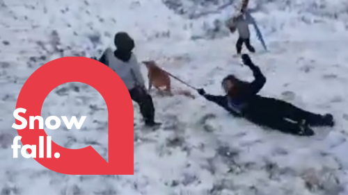 The hilarious moment girl gets pulled down snowy hill by her dog - RAW