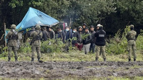 Two guards hurt during violence at Poland-Belarus border