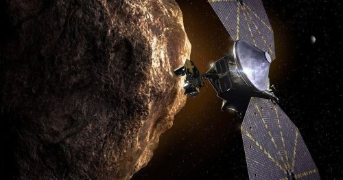 NASA's Lucy Probe Launches to Study Asteroids Near Jupiter