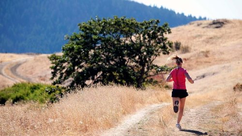 Is Running Every Single Day Good for Your Body? Plus Other Tips for Runners