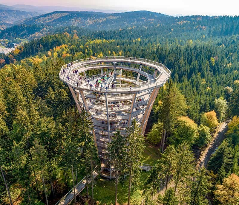 THE MOST INCREDIBLE TREE TOP WALKWAYS IN THE WORLD