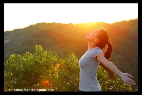 The Ultimate Beginners Guide To Boosting Your Energy Naturally
