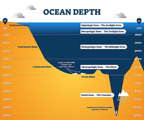 Mariana Trench: The Deepest Depths But Whats Down There