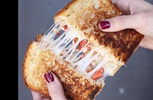 Lobster Is The Upgrade Your Grilled Cheese Needs. Here's Why
