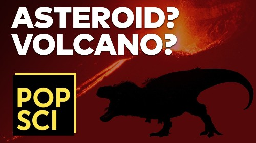 How and When Did the Dinosaurs Die?   VOLCANO OR ASTEROID?