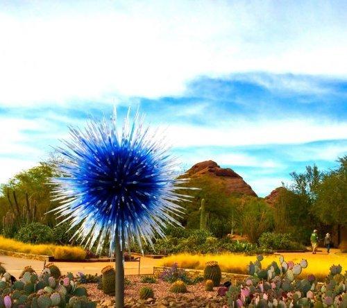 Got plans to visit Arizona?