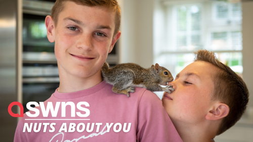 UK family have adopted a baby squirrel after it hitchhiked on their son's leg all the way home (RAW)