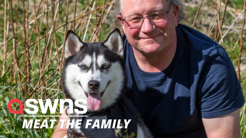 UK couple sacrificed getting a new kitchen to rescue a Siberian husky from the Chinese meat trade