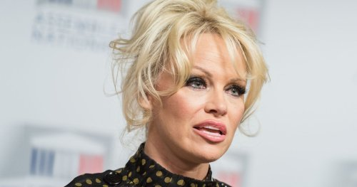 Pamela Anderson: The Rise & Fall Of Her Career And Fortune