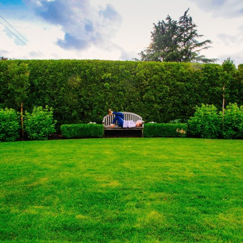 Green Fence Design Ideas, Yard Landscaping and Decorating with Plants