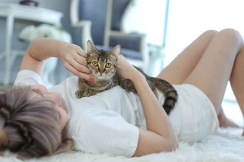 5 Reasons You Cat Loves to Lie on Your Chest