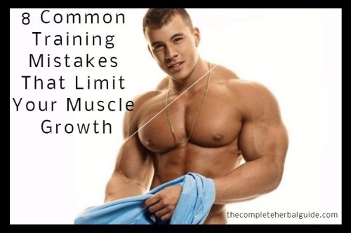The Best Strength Training To Build Muscle At Home Workouts