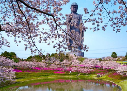Japan's Got Jaw-Dropping Giant Buddha Statues