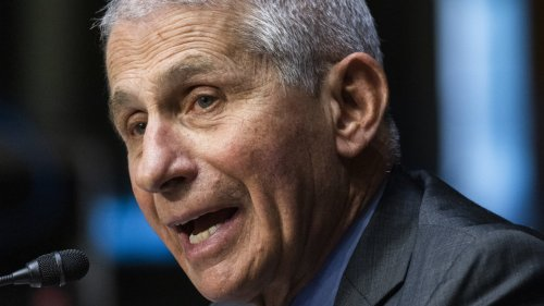 Fauci Says More Pain And Suffering Ahead For The U.S.