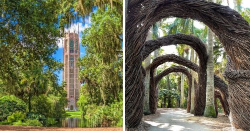 Florida Might Be Known For Its Beaches, But These Botanical Gardens Are Just As