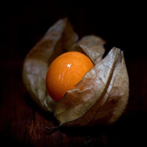 Strange Fruits Worth Tasting