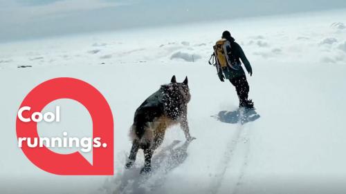 Faithful canine runs alongside his owner as they snowboard down a mountain (RAW)