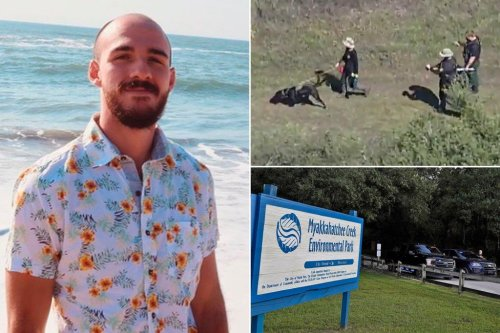 Human remains found in Florida park likely Brian Laundrie, family lawyer says