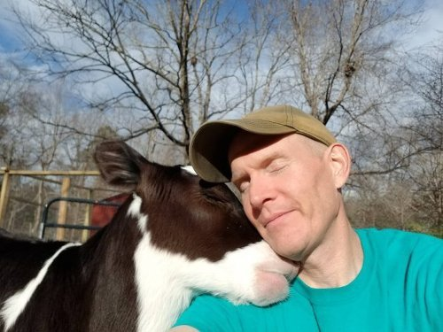 After This Man Rescued a Cow from a Dairy Farm, the Two Developed the Most Unbel