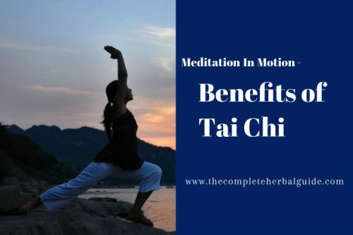 The Ultimate Beginners Guide To Tai Chi