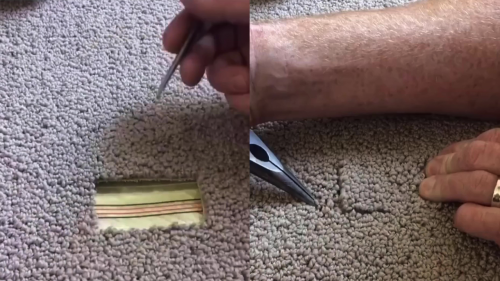 'This Talented Carpet Repair Guy can Fix any Carpet'
