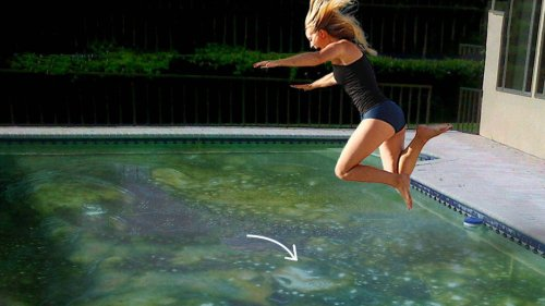 What If You Jumped Into a Pool Filled With Human Saliva?