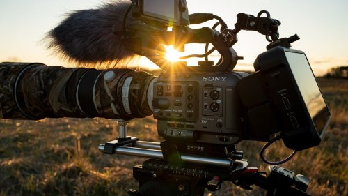 Filming Wildlife With the Sony FX6
