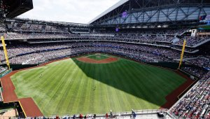 Take Yourself Out to the Ball Game With These Safety Tips in Mind