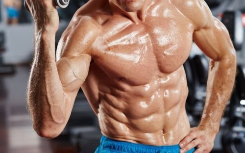 The Top 14 Ab Exercises to a Shredded Six Pack