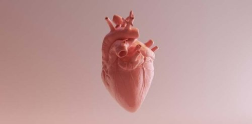 If You Can Do This Simple Test In 1 Minute, Your Heart Is in Good Shape