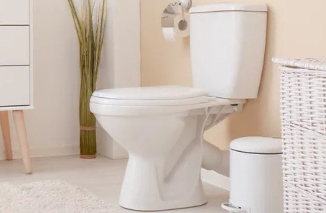 You Probably Didn't Know The Toilet Seat In Your Home Could Do This