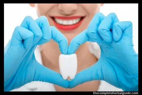 Great Dental Hygiene Tips for Better Oral Health