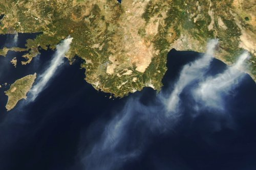 Turkey's burned forests now an environmental battleground