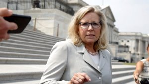 Liz Cheney Claims GOP Lawmakers in the House and Senate Have Cheered Her on Privately in Her Fight Against Trump