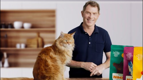 Celebrity Chef Bobby Flay Launches 'Made By Nacho' Cat Product Line Developed With His Cat