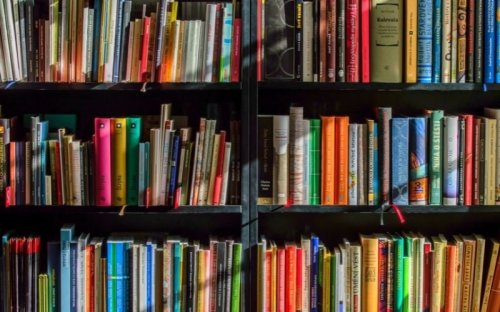 The Exact Amount Of Minutes To Read Per Day To Boost Brain Function