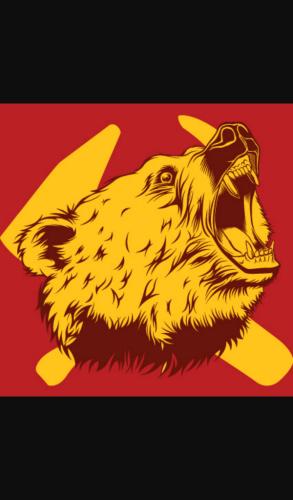 A Bear Is Still A Bear cover image