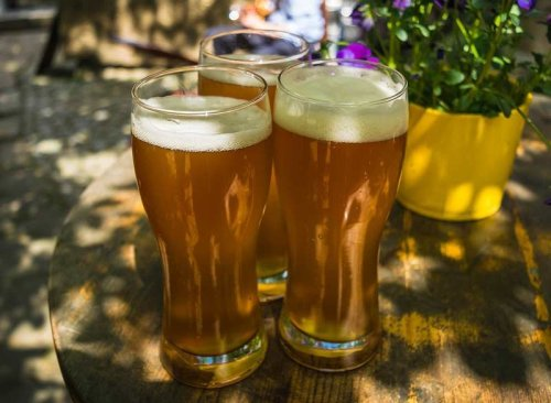 Homebrewed Beer Recipes for Beginners