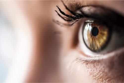 52 Interesting Facts about Eyes You Might Not Know