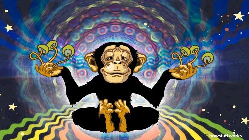 The Stoned Ape Hypothesis: Did Magic Mushrooms Influence Human Evolution?